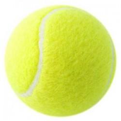 Tennis bolde
