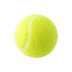 100 stk. Tennisbolde